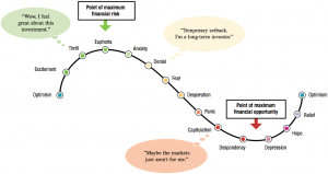 The Roller Coaster of Investor's Emotions: 14 Steps That Will Improve Your Investing Decisions